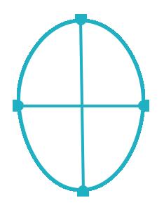Gesichtsform Breite